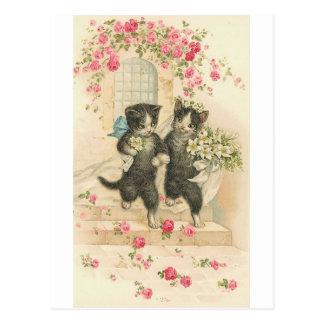 Apenas gatos casados del gatito tarjetas postales