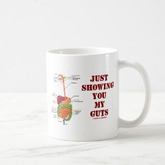Apenas mostrándole mi tripa (humor del sistema taza