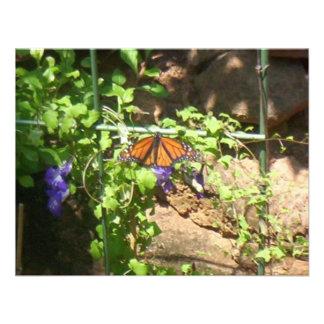 Apenas otra mariposa anuncios