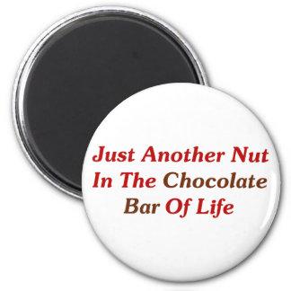 Apenas otra nuez en la barra de chocolate de la vi imán