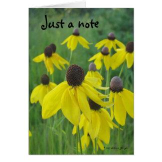 Apenas una tarjeta de nota/un Coneflowers amarillo