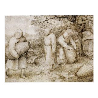 Apicultores de Pieter Bruegel la anciano Postal