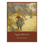 Apple cosecha por Carl Larsson Póster
