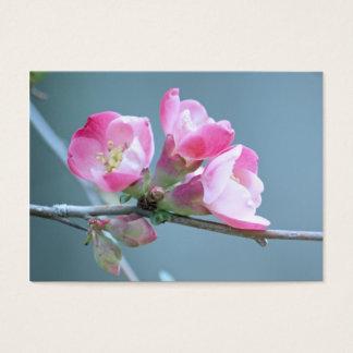 Apple florece la mini impresión #P0358 Tarjeta De Visita