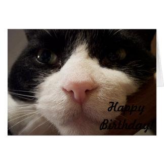 Aquí estoy: Feliz cumpleaños (tarjeta con el gato) Tarjeta De Felicitación