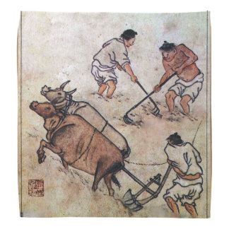 Arado coreano del campo del arroz de Danwon Bandanas