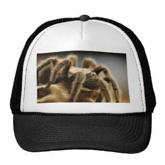 Araña contemplativa - imagen 8 del arte del gorros bordados