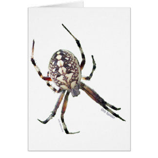 Araña del orbe tarjetas