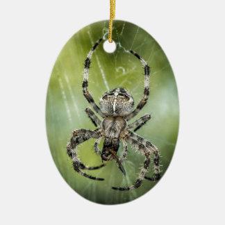 Araña que cae hermosa en el Web Adorno De Cerámica