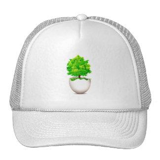 árbol de arce que crece fuera del eco graphic.png  gorro