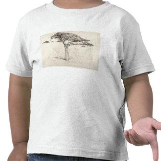 Árbol de cedro viejo en el jardín botánico, camiseta