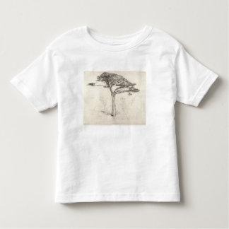 Árbol de cedro viejo en el jardín botánico, camiseta de niño