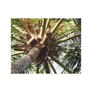 Árbol de coco - arte de la lona - isla caribeña