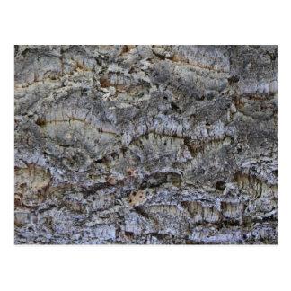 Árbol de corcho postal