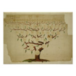 Árbol de familia de Bach, c.1750-1770 Impresiones