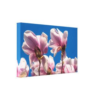 Árbol de la magnolia lienzo