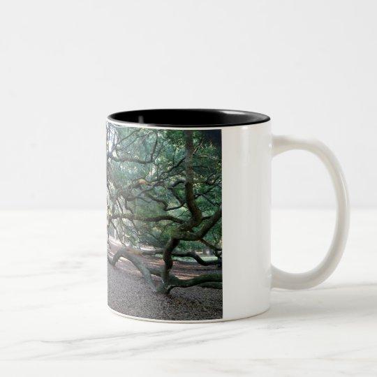 Árbol de la taza de café de la vida