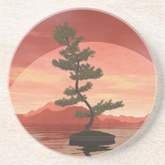 Árbol de los bonsais del pino escocés - 3D rinden Posavasos De Arenisca