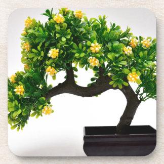 Árbol de los bonsais posavasos