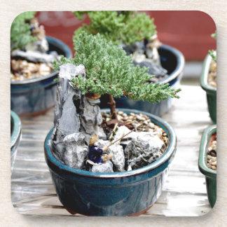 Árbol de los bonsais posavasos para bebidas