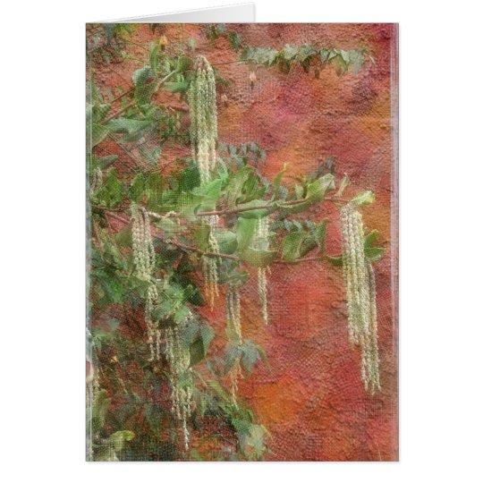 Árbol de seda de la borla - tarjeta