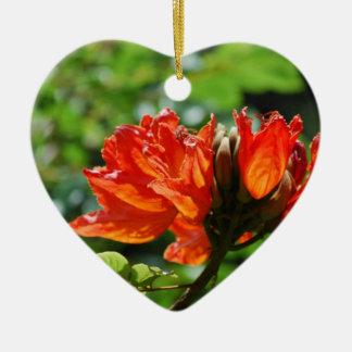 Árbol de tulipán africano anaranjado ornamentos de reyes magos