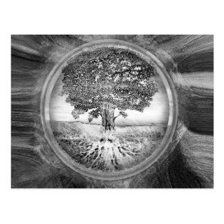 Árbol del blanco del negro de la esperanza de la postal