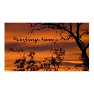 Árbol desnudo en la puesta del sol tarjetas de visita