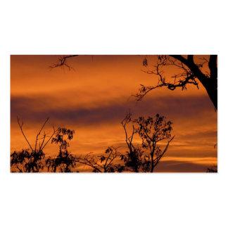 Árbol desnudo en la puesta del sol tarjetas de negocios