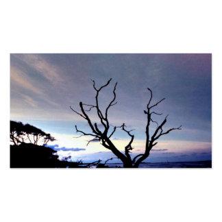 Árbol desnudo en orilla en la puesta del sol tarjetas de visita