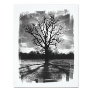 Árbol estéril de las ramas invitación 10,8 x 13,9 cm