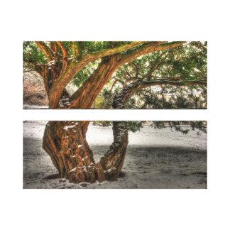 Árbol Impresión En Lienzo
