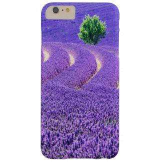 Árbol solitario en el campo de la lavanda, Francia Funda Barely There iPhone 6 Plus