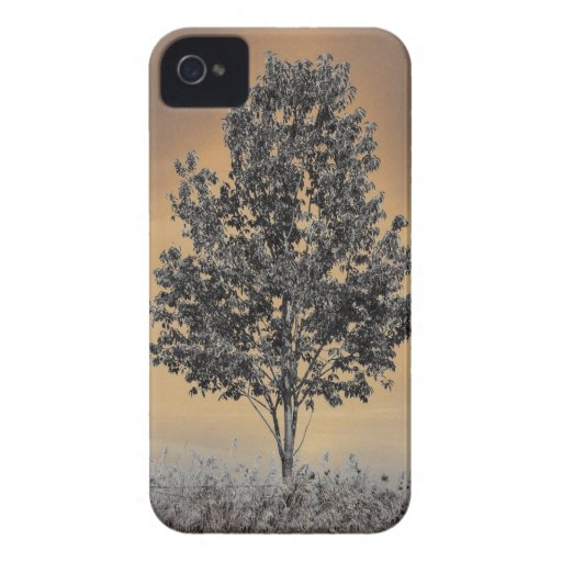 Árbol solo iPhone 4 Case-Mate funda