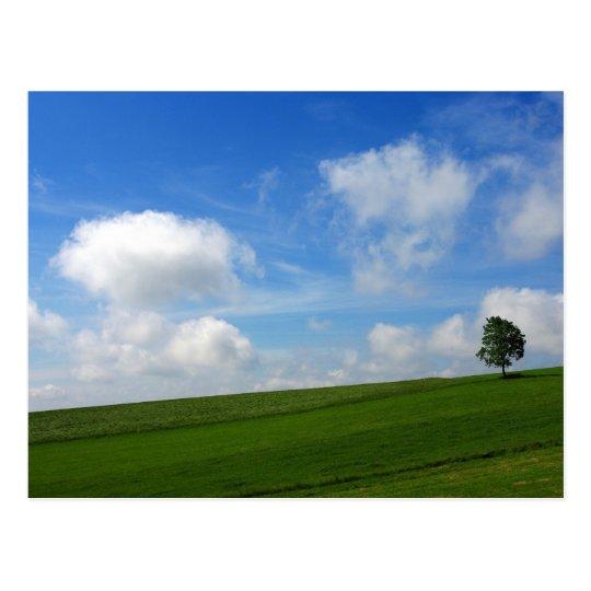 Árbol solo - postal