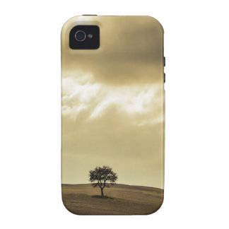 Árbol toscano vibe iPhone 4 funda