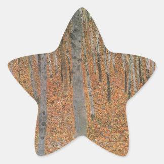Arboleda de la haya fresca pegatina en forma de estrella
