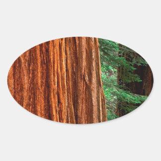 Arboleda Yosemite de Mariposa de la secoya gigante Pegatina Oval