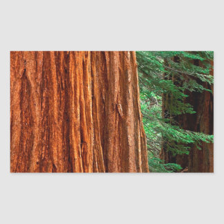 Arboleda Yosemite de Mariposa de la secoya gigante Rectangular Altavoz