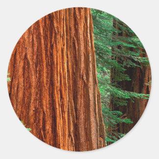 Arboleda Yosemite de Mariposa de la secoya gigante Etiquetas Redondas