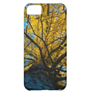 Árboles Carcasa iPhone 5C