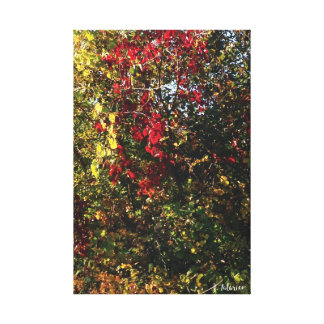 Árboles de la caída lienzo