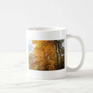 Árboles de la caída taza de café