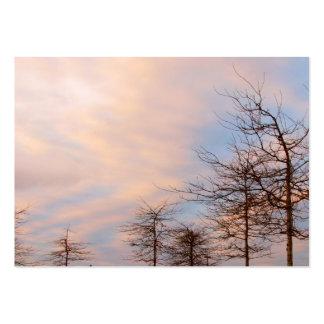 Árboles de la puesta del sol en invierno plantillas de tarjeta de negocio