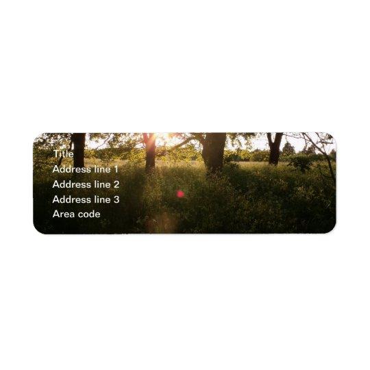 Árboles de la silueta y etiquetas de dirección del