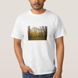 Árboles de olmo del otoño en el Central Park, New Camiseta