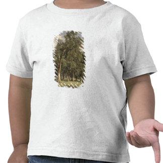 Árboles de olmo en Prater 1831 Camisetas