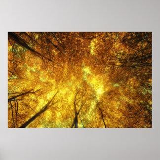 Árboles de oro de sueños sin fin póster