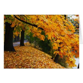 Árboles de oro del otoño tarjeta de felicitación