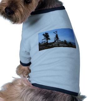 Árboles de pino en rocas en el canal del norte camiseta con mangas para perro